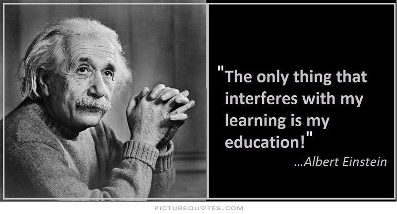 Einstein, BinkNyc Culture