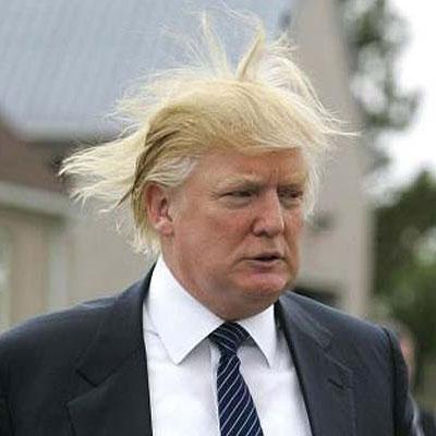 Donald_Trump_hair